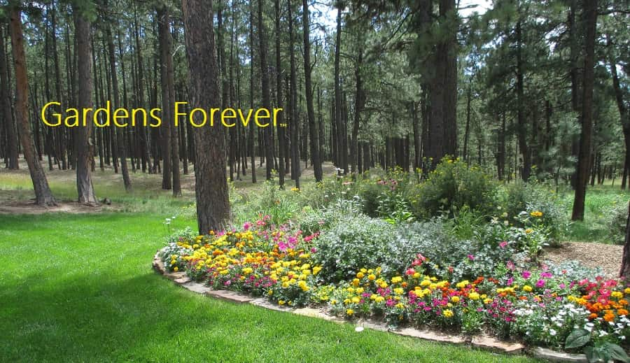 Gardens forever organic landscaping service organic gardening and landscaping consultation mightylinksfo